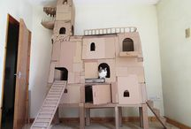 kitty forts