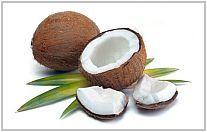 kokosvet mayonaise