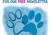 Sign Up For FREE Newsletters / http://www.holisticandorganixpetshoppe.com/sign-up-for-free-newsletters.html