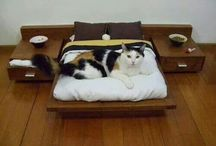 turbo bed designs
