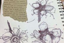 Art sketch books
