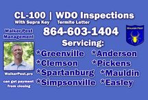 Termite Letter | CL100 | Home Inspection | WalkerPestManagement.com / Termite Letter or Termite Inspections for purpose of purchasing a home. Most lending agencies in South Carolina require a CL100 inspection to be clear before they will lend on a home.