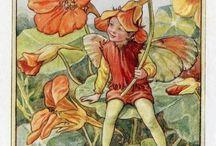 Flower Fairy,s enzo...