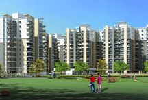 satya group / Satya Group one of the leading developers in Gurgaon India. satya group lunch a new project in sector 103 Gurgaon. Satya Group is 7 million sq. ft. area by the promoters.