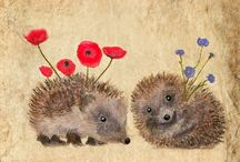 Hedgehog's/Sünök