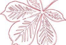 filigrán őszi