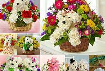 floral arrangements / by Terri Phillips