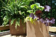 Be Organic! / For all things garden! / by Tanya Johnson