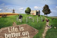 Farming life / by Tama - Farm Grown Solutions