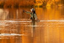 Friends Pics / by Stillwater Fly Shop