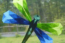 Dragonflies & Damselflies / by Calvin College Ecosystem Preserve