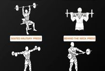 Workout Ideas / Shoulder Excercises
