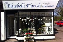 Bluebells Florists and Gifts / My Florist