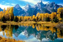 Fall into GTNP / Shorter days and colder temperatures bring out vibrant fall colors in the Tetons