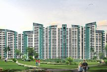 Buy Affordable Apartments In Noida