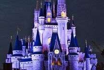 Disney World / by John Dziak