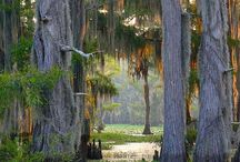 Travel the Gulf  Louisiana, Alabama, Mississippi / gulf states