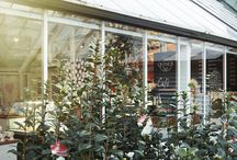 Clifton's Quince Tree Cafe / Our cafe is open every day and serves the most delicious breakfasts, lunches, cakes and treats