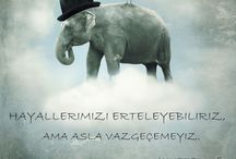 Ahmet Erkuş