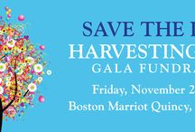 Harvesting Hope 2014 / Nov 21, 2014 at Boston Quincy Marriott. More info and tickets at: Dovema.org