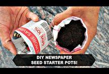 planter vi skal plante