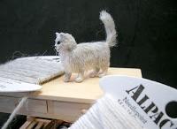 dollhouse miniature cat