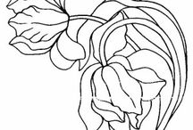 Free Flowers coloring book / Free Flowers coloring pages