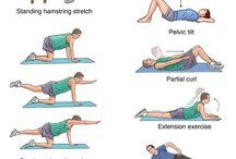Z. Układ kostny i mięśnie