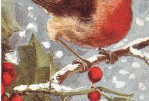 Printable - Xmas & Winter - Birds