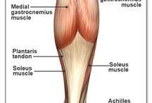 Testszobrászat / Strukturális integráció. A test vízszintes egyensúlya és a függőleges együttállás - hogy újra a helyedre kerülj. :)