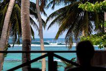 Viajes de surf / Los mejores destinos para tus viajes de surf. #Surf #Viajesdesurf #surfspots #Surfcamps #Surfhostels #Surfhouse #Surfing #Escuelasdesurf #waves #Surfspots