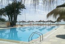 Hôtel El Mouradi Djerba Menzel**** / Hôtel situé à Djerba (Tunisie)