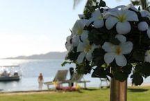 Wedding-Fiji
