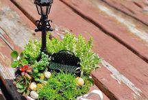miniature garden moss garden fairy garden