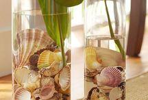 deniz kabugu :)