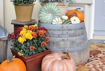 Thanksgiving Decorations / by Tammy Dimsdale