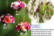 Flowers & events  / by Per Ayala