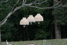 Lilyvale wedding