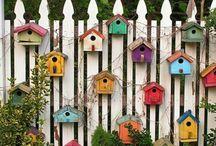 maison oiseau jardin