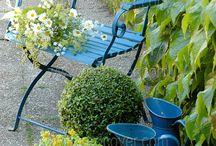 Garden...grow! / by Onanda Nikolaisen