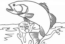 Fish coloring pages / Dolphins, sharks and fish coloring pages