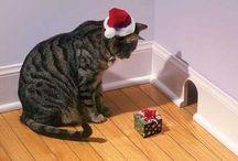 Joulun lahjaideoita / On taas SE aika vuodesta!
