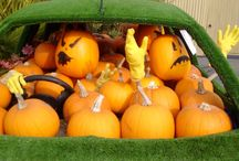 Halloween @hambrooks / Come and visit our Pumpkin Display at Titchfield Hampshire and prepare your garden for halloween