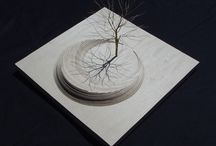 A. Tree models / Tree models for architecture, maquets, new architecture studens and etc.