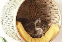 legowisko dla kotka - pelíšek pro kočku