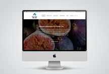 Our Work | Website Design / www.newnormal.co.za