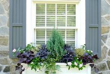 Window box design