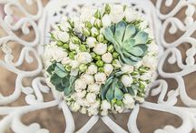 Bouquets de Suculentas