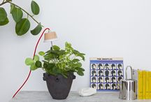 Chlorophyll LED Grow Lights / The Sunlight in a lamp! How to keep your greenery thriving all year round. Chlorophyll - a charismatic LED grow light.
