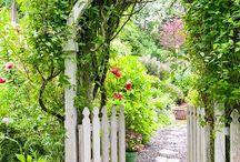 jardin extérieur